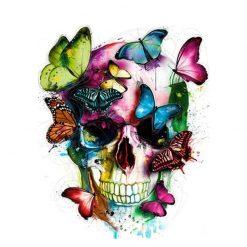 tableau tete de mort papillon