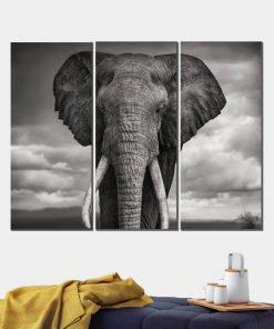 tableau triptyque elephant